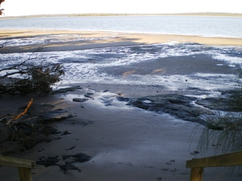 Whitepatch at lowtide