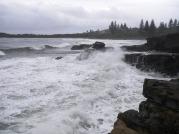 Yamba Rocks - Fish love to hide in the foam