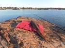 A Port Augusta Flathead