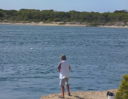 Salmon busting up at Coffin Bay - SA