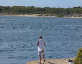 Salmon busting up at Coffin Bay - SA