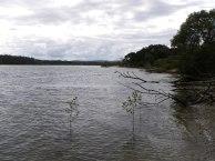 The Sandon River near Brooms Head