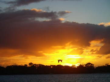 A magnificent Bribie Island sunrise