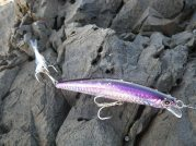 Duo Tide Minnow - a great lure