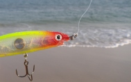 A bibless RAPALA Clackin Rap - not tough enough