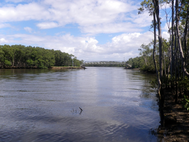 Boggy Creek - a great Brisbane River fishing spot