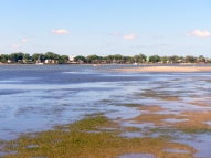 The sandbar at low tide