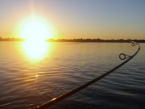 Rod bend at sunrise - nice