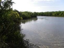 Fishing Creek at high tide