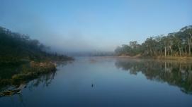 Burnett River at Gayndah