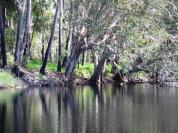 Deepwater Creek - pretty spot
