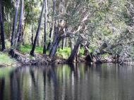 Deepwater Creek - pretty spot