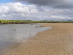 Fishing Creek as the tide runs out