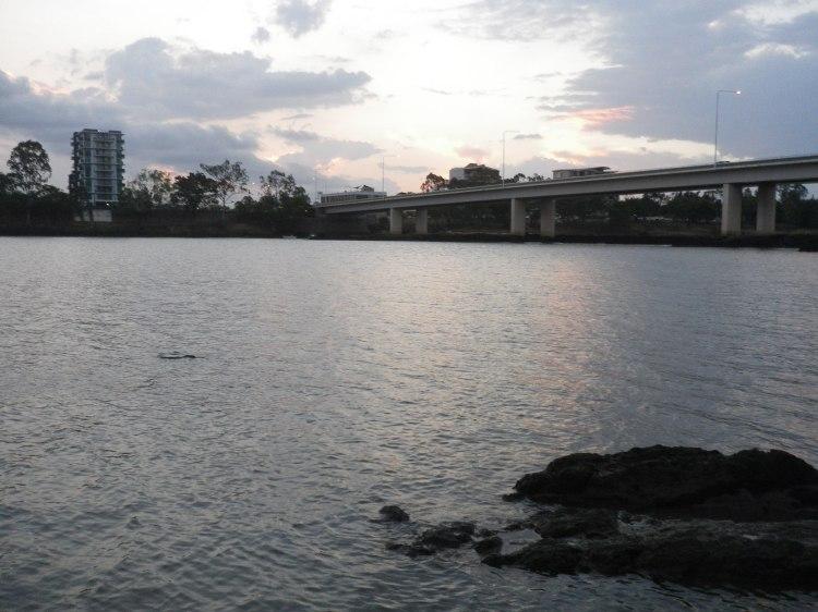 Dusk on the Fitzroy River at Rockhampton
