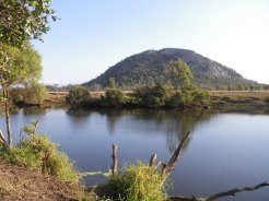 Site of my second Hedlow Creek barramundi encounter