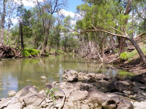 Rocks and timber with good water flow - ideal conditions