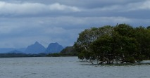 Bribie flats at White Patch
