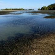 Drain at low tide