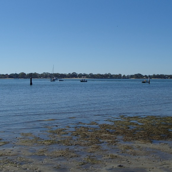 Plenty of boats out
