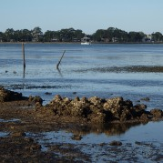 Bribie old oyster leases