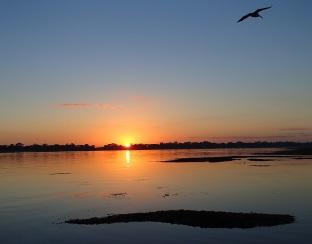 Another still sunrise