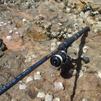 Light rock fishing rig