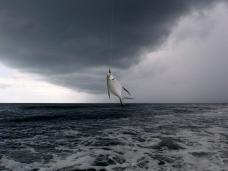 Dart and black cloud