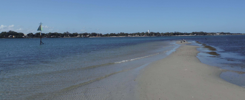 Back on my desert island with a few fish landangler 39 s blog for Desert island fishing