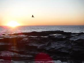 Clear sunrise