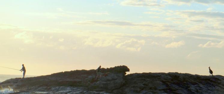 Fishermen and Kangaroo