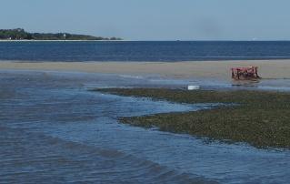 Stranded crab pots