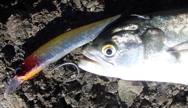 DUO REALIS Jerkbait 110mm SP