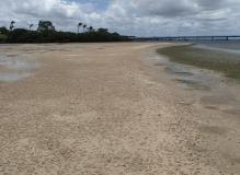Sandstone Point flats