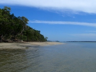 Whitepatch - Bribie Island
