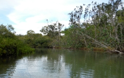 Marshalls Creek