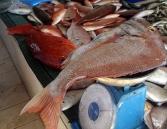 Mutrah fish market