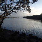 Fishing at Boggy Creek - Brisbane RIver