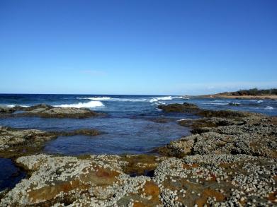 Low tide at Wreck Rock