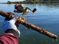 Catching a fishing rod