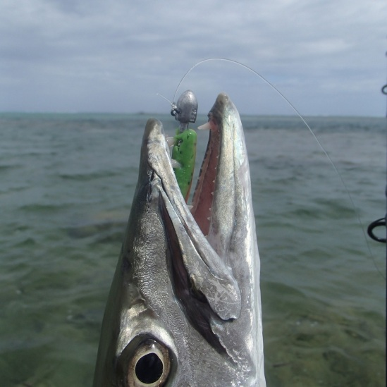 New Caledonia fishing