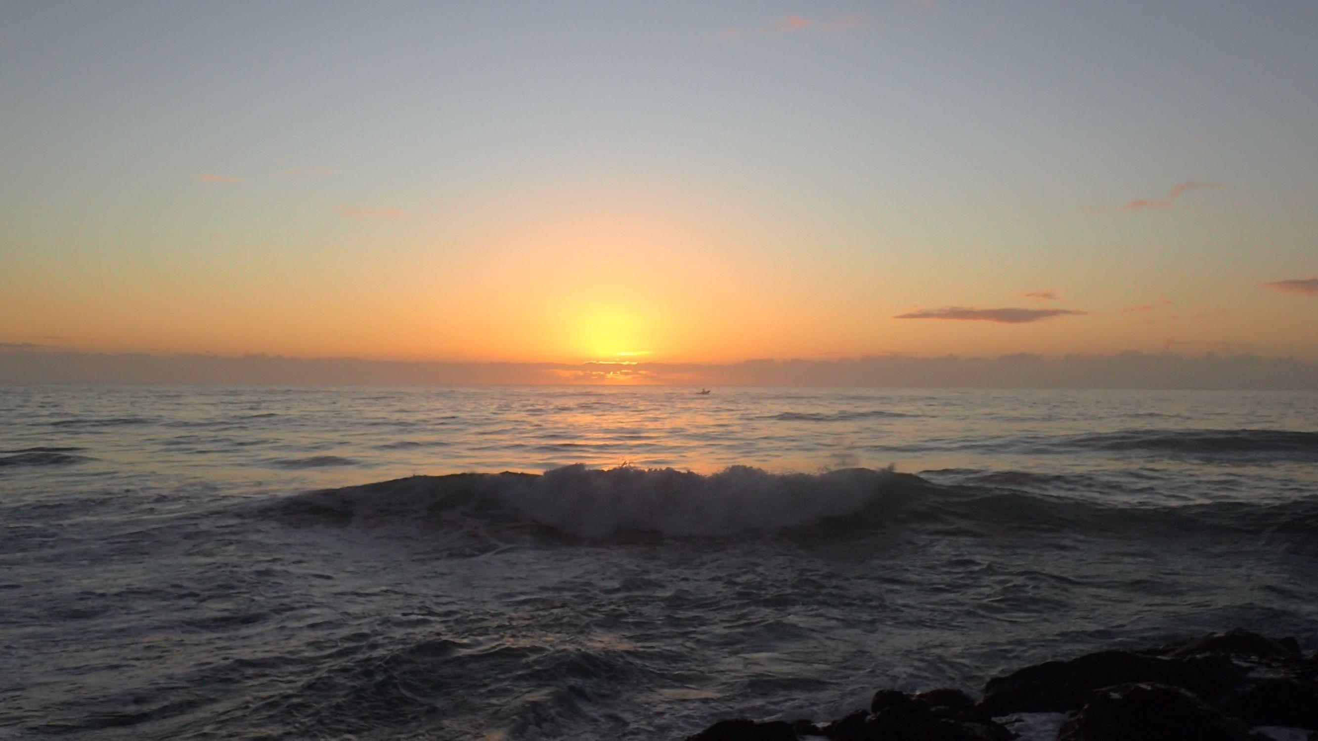 Jewfish   Landanglers Blog
